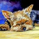 Yorkshire Terrier Posters and Prints at Art.com