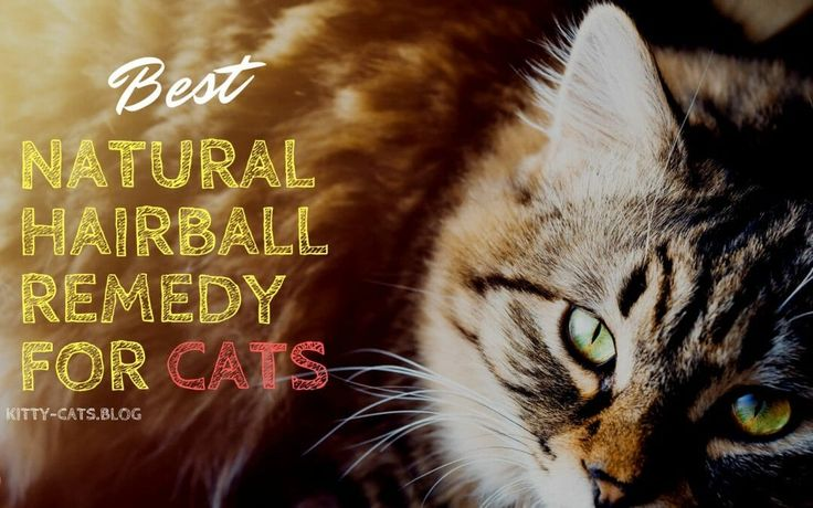 hairball control cat food side effects