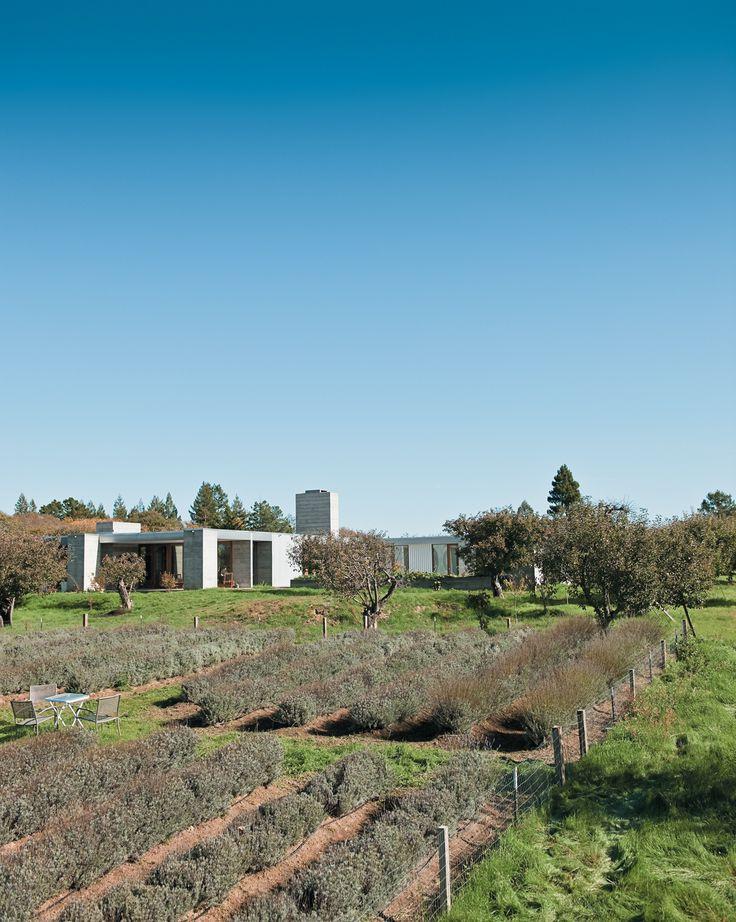 20 Modern American Farmhouses That Update Tradition. Sebastopol  CaliforniaOrchardsHouse ...