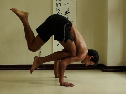 Yoga Arm Balances