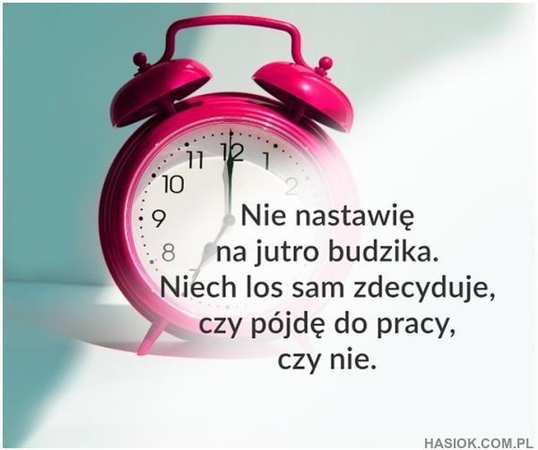 Nie nastawię -  http://hasiok.com.pl/821/Nie-nastawie
