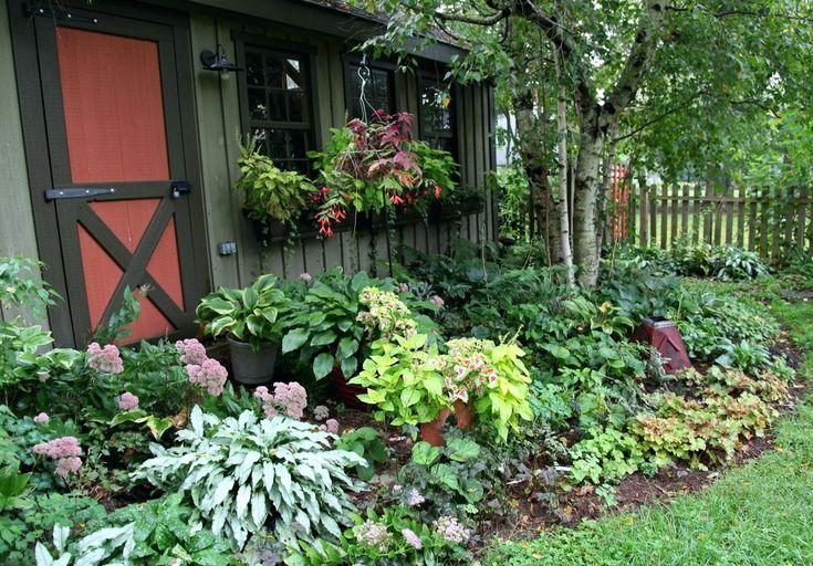 shade perennials zone 7 garden 7a part shrubs 7b   Shade ...