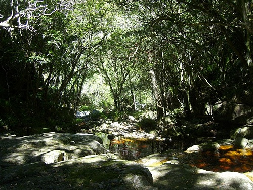 Cape Town hike - orangekloof