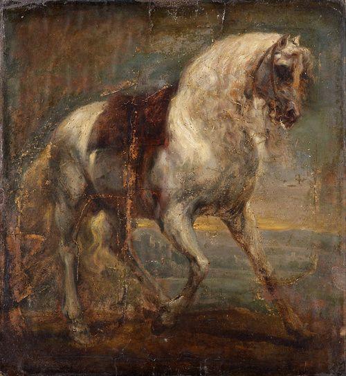 A Grey Horse, 1641, Sir Anthony van Dyck