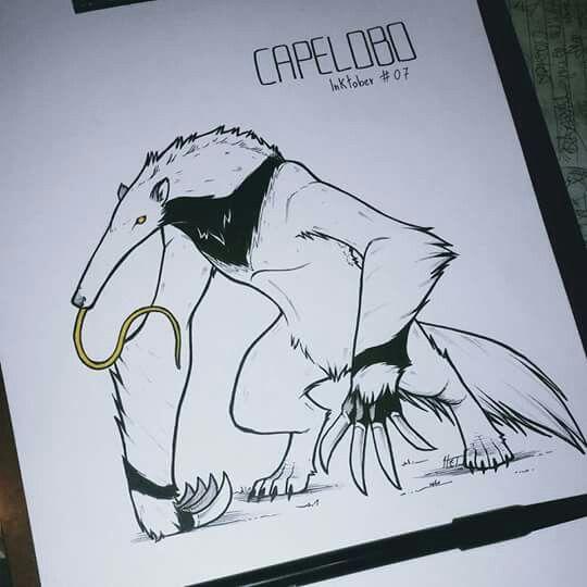 Capelobo