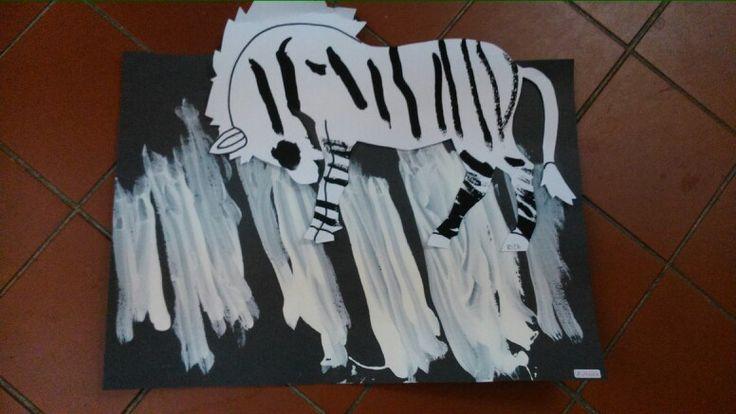 Zebra na zebře