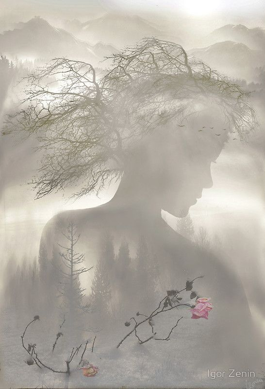"""Dreaming Spirit"" by Igor Zenin | Redbubble"