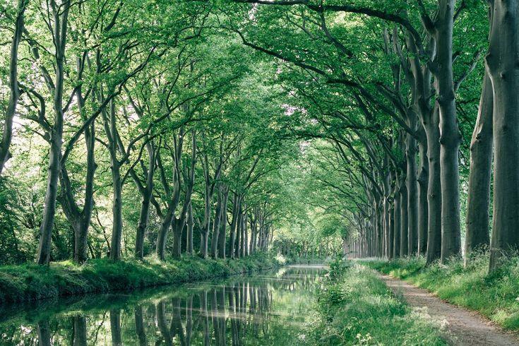 Canal du Midi, Toulouse, France