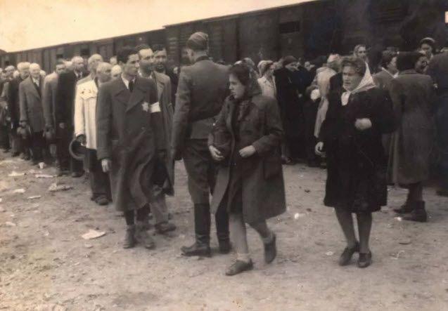 Black Slavery VS Jewish Holocaust?