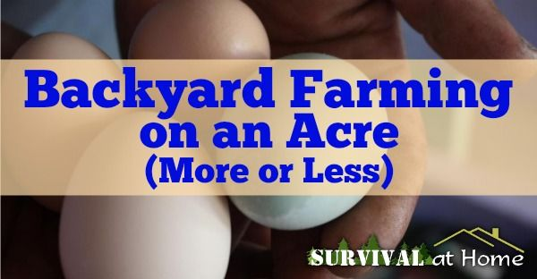 Backyard Farming on an Acre (More or Less) (via Survival at Home)