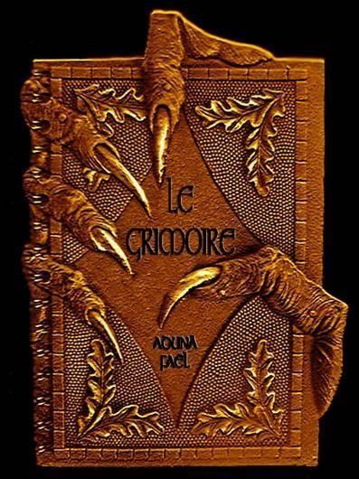grimoire Les sorts sont des « invocations ». Ils sont invoqués par des formules magiques que les sorciers et sorcières utilisent. On peut trouver des formules magiques dans des grimoires de sorcelleries, des livres d'enchantement… Ils peuvent être inventés par des auteurs de livres, de romans, de mangas…