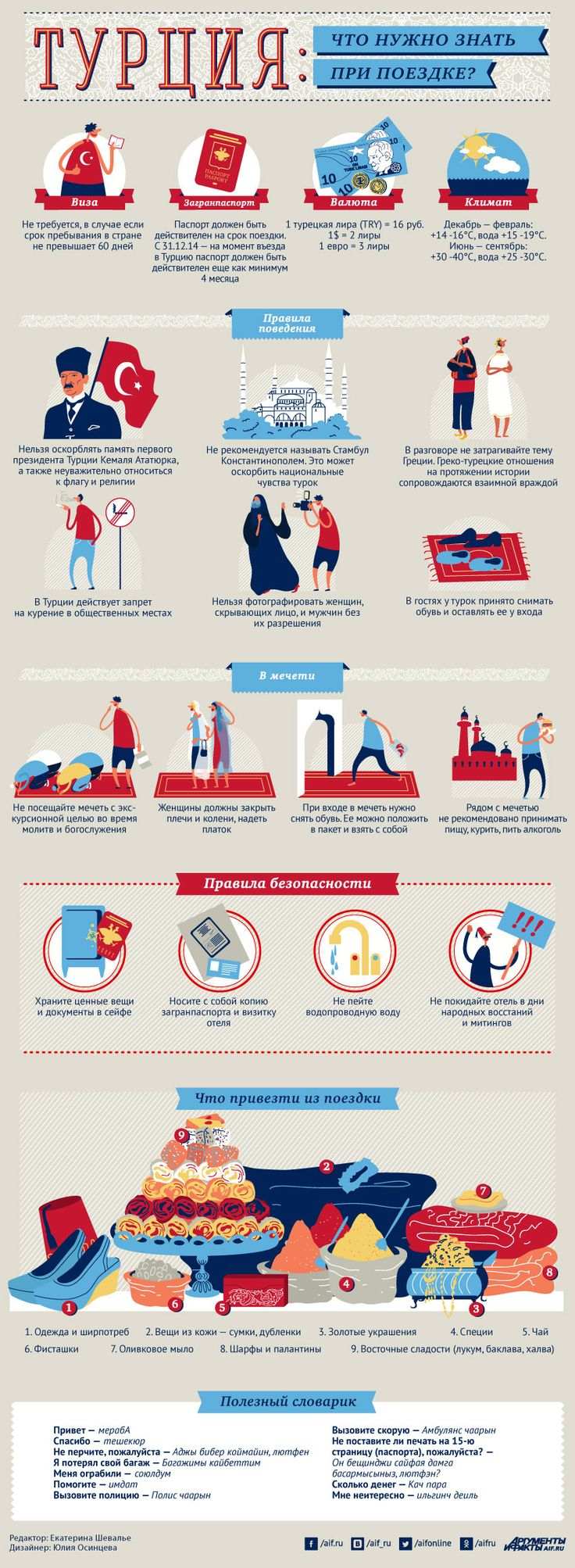 Что нужно знать при поездке в Турцию? Инфографика | Инфографика | Аргументы и Факты