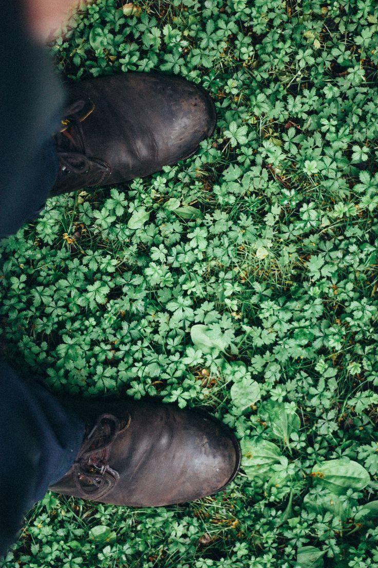 Schoenen/persoon op groen gekleurde blaadjes.