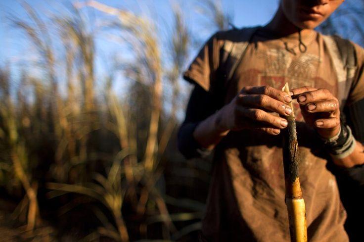 Feldarbeiter in Chichigalpa, Nicaragua (Archivbild)