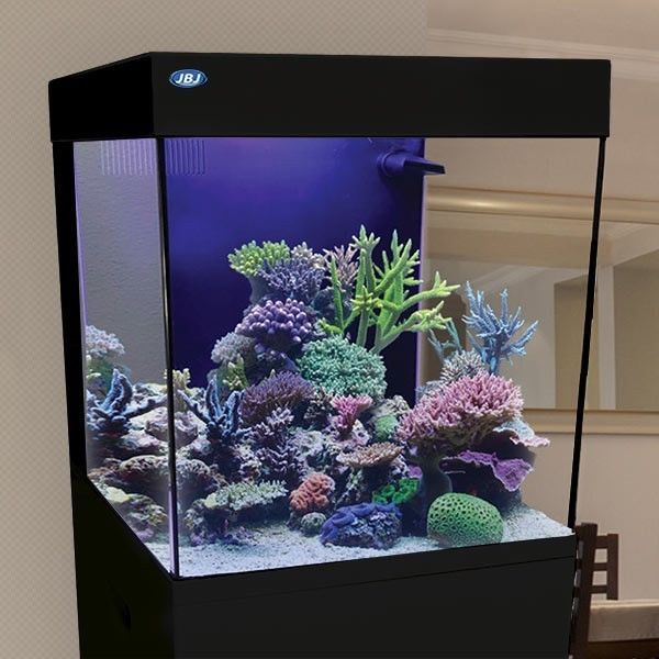 15 Gallon Cubey Tank & Stand Kit Nano All in One Aquarium