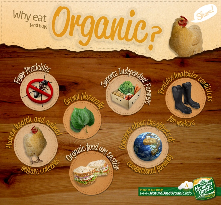 Organic Food Recipes With Pictures