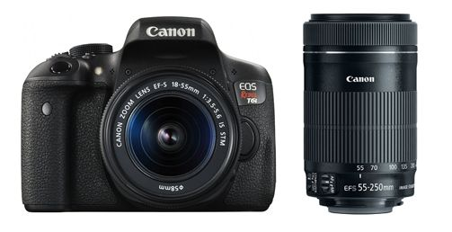 6 Best Lenses for Canon Rebel T6i/T6s