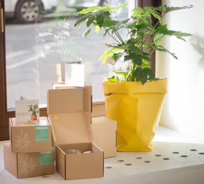 """Grüner Daumen hoch!   Waterworks at Das Rote Paket in Leipzig - Any store that describes itself as follows:""""Nice people, interested in design, who rejoice in great materials and shapes."""" is a store we're happy to connect with."""