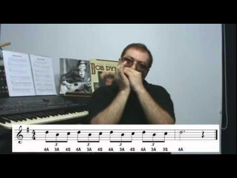 GAITA DE BOCA - ESCALA BLUES - INICIANTE E INTERMEDIÁRIO - YouTube