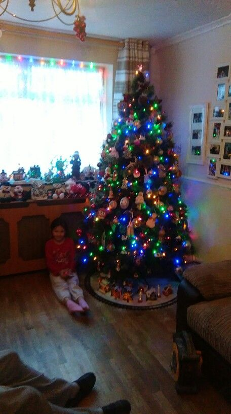 A hard days work putting the tree up