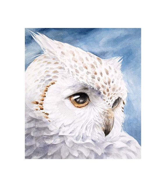 WisdomOriginal owl watercolor paintingOwl Head by KURONINJIN