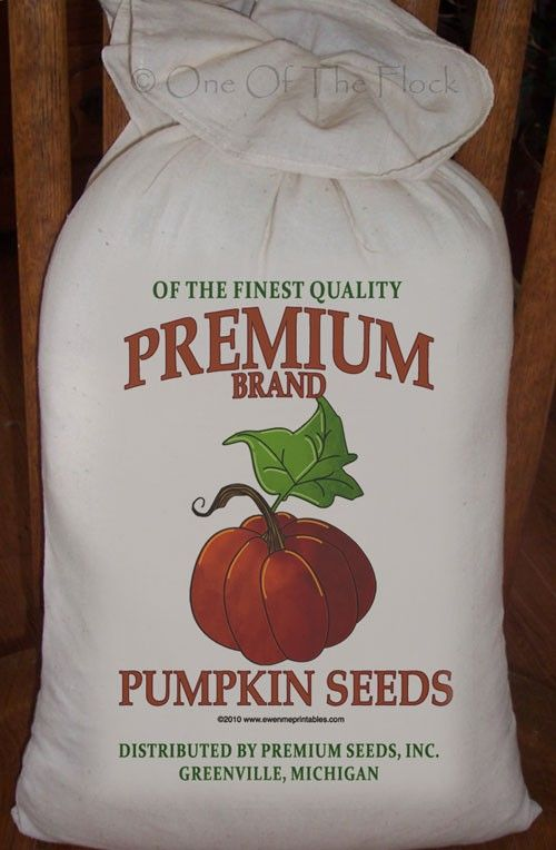 Primitive Feed Sack Premium Pumpkin Seeds by HomeSeweetHome, $7.50
