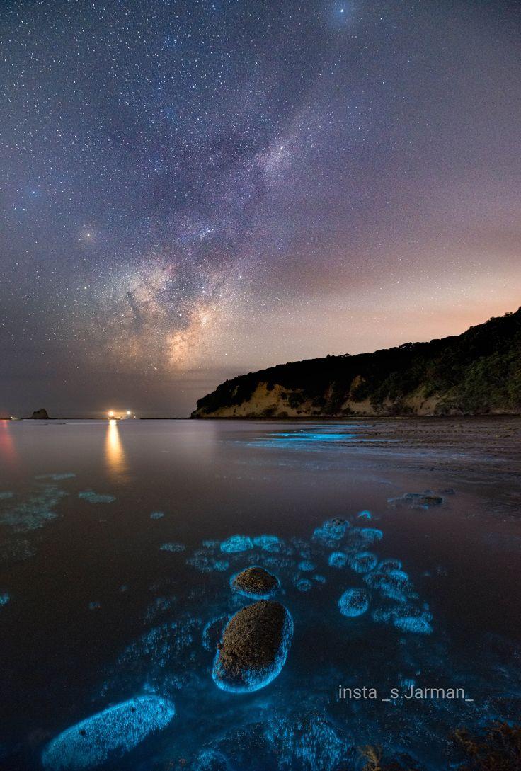 Bioluminescence and the milkyway new zealand3915x5797