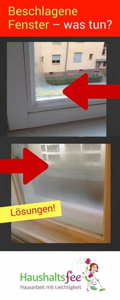 Hilfe, die Fenster beschlagen immer | http://Haushaltsfee.org