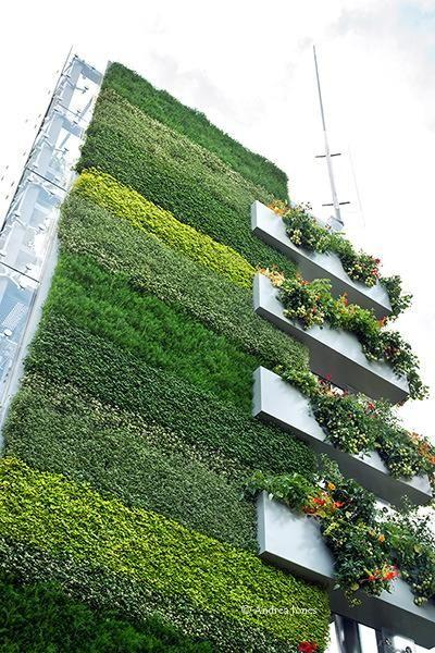 jardn vertical con jardineras