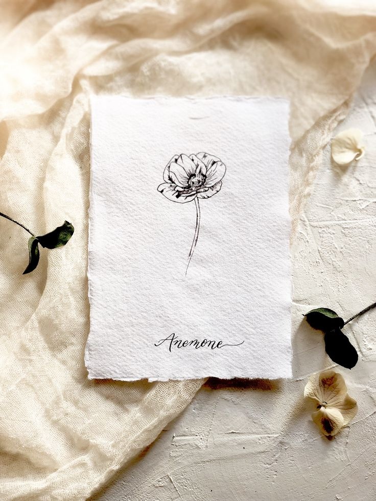 Botanical illustration. Modern florals. The anemone-flower of sincerity.