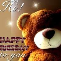 Hi! Happy Tuesday to you