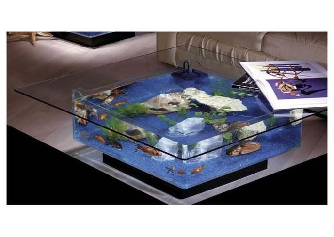 17 best images about misc on pinterest brad pitt - Fish tank living room table ...
