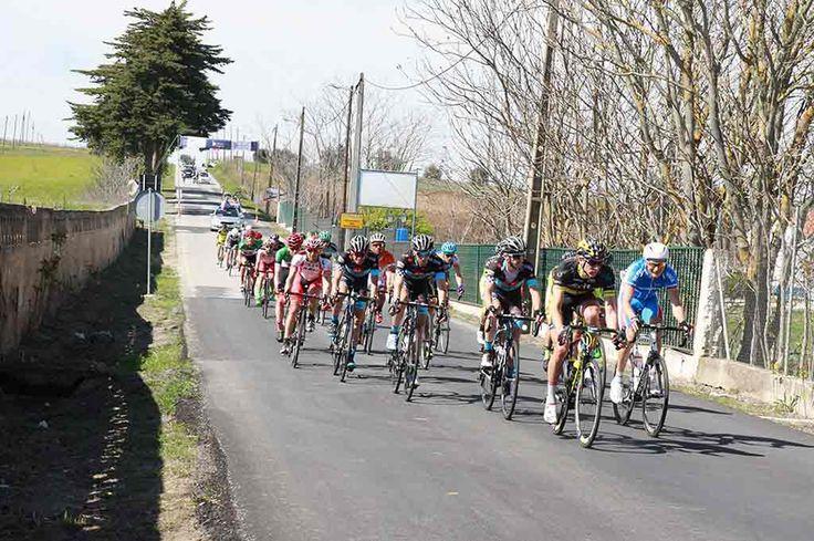 Reguengos de Monsaraz: Campeonato Nacional de Masters e Elites Amadores em ciclismo disputa-se no concelho | Portal Elvasnews