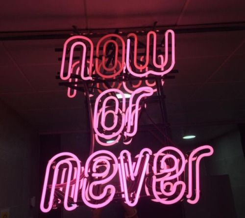 GIRLBOSS MOOD: Now or never. // Neon signs