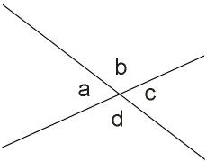 Rumphius Romp: Mathematics : Geometry Session 1