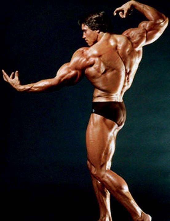 Opinion you Arnold schwarzenegger naked body apologise