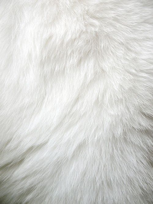 : French Connection, Faux Fur, Colors Mean, White Texture, Furry White, Texture Patterns, Colors Whit, White Fur, Fur Rugs