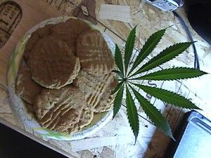 Cooking With Cannabis – Do's and Dont's