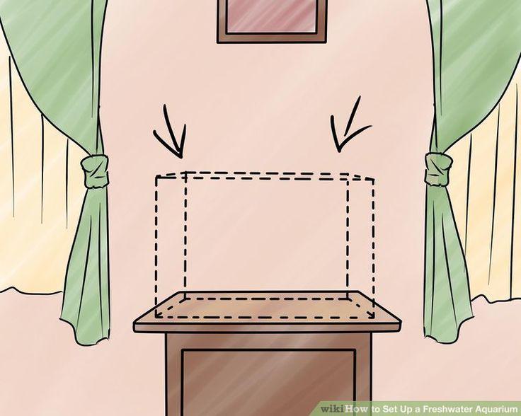 How to Set Up a Freshwater Aquarium   Freshwater aquarium ...