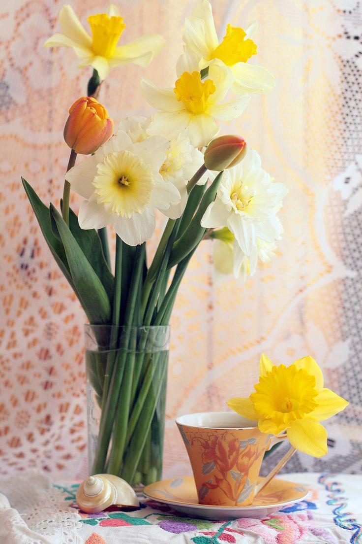 Daffodils and tea. Нарциссы и чай.