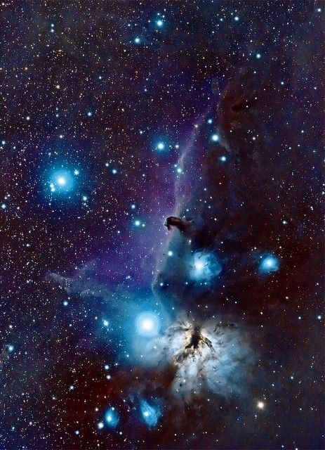 The Horsehead and the Flame Nebulas in the constellation Orion.. cool color