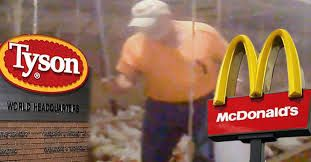 Undercover video released on Wednesday byanimal rights organization, Mercy for Animals, showshow chickens are treated beforebeing turnedinto McDonald's famousChicken McNuggets.