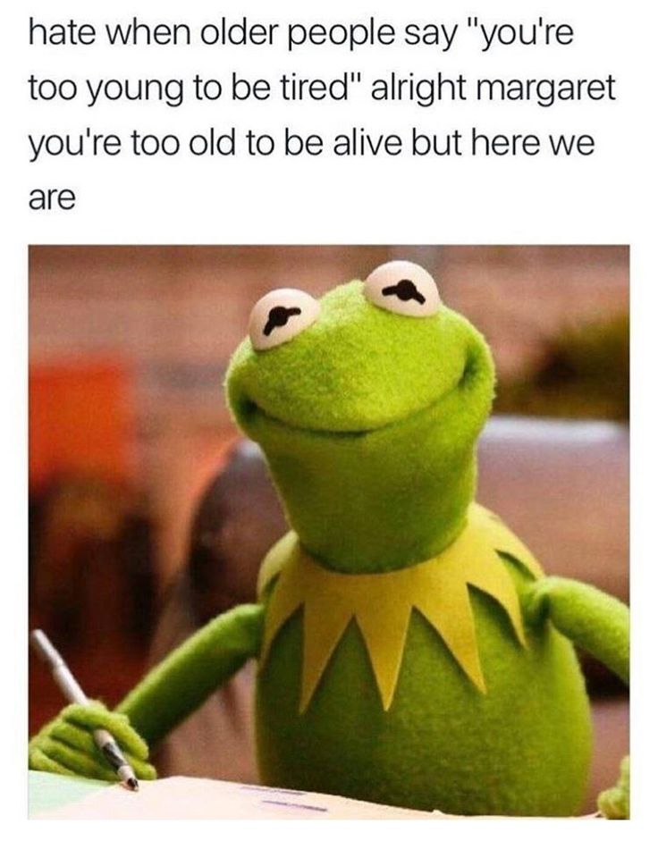 Kermit the frog meme of sassy answer when people say you are too young to be tired