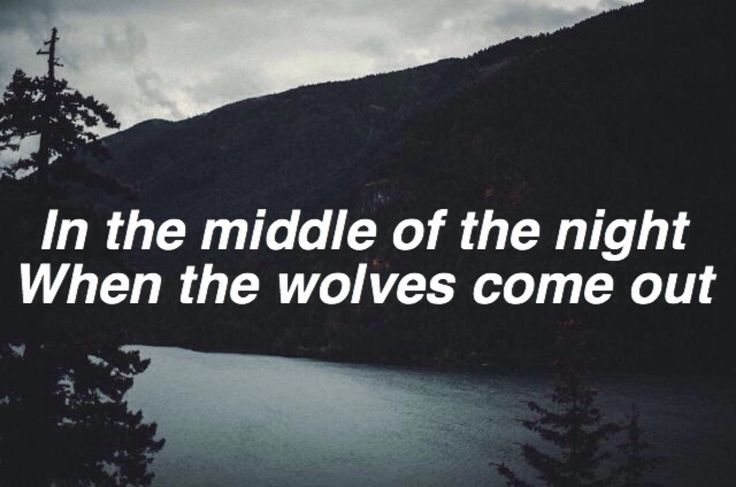 wolves / made in the am one direction