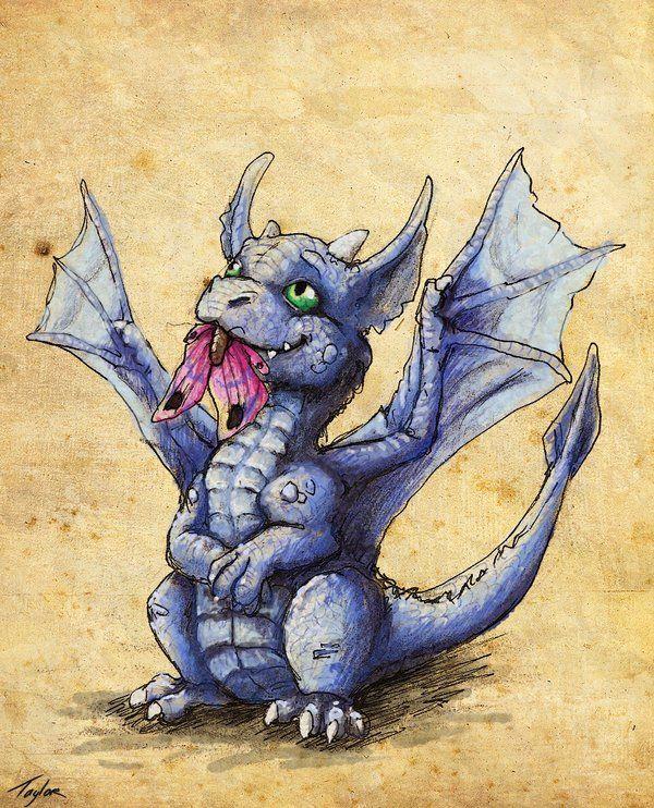 Смешные аниме, картинки с дракончиками милые