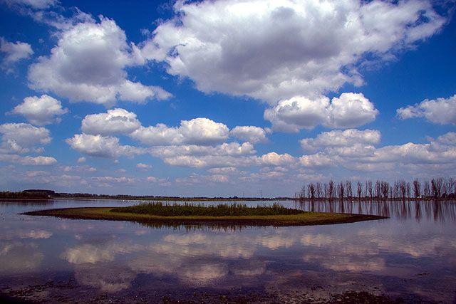 Biesbosch National Park Holland