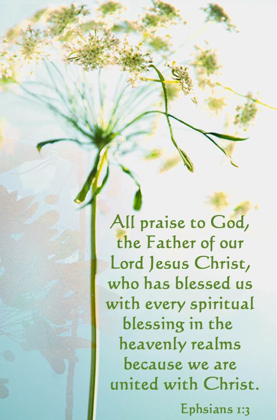 "Ephesians 1:3:  ""We praise God, the Father of our Lord Jesus Christ, WHO HAS BLESSED US WITH EVERY SPIRITUAL BLESSING in the heavenly realms BECAUSE WE BELONG TO CHRIST. "" NLT - What a wonderful thought for today at the start of this New Year 2015.   (Helen)"