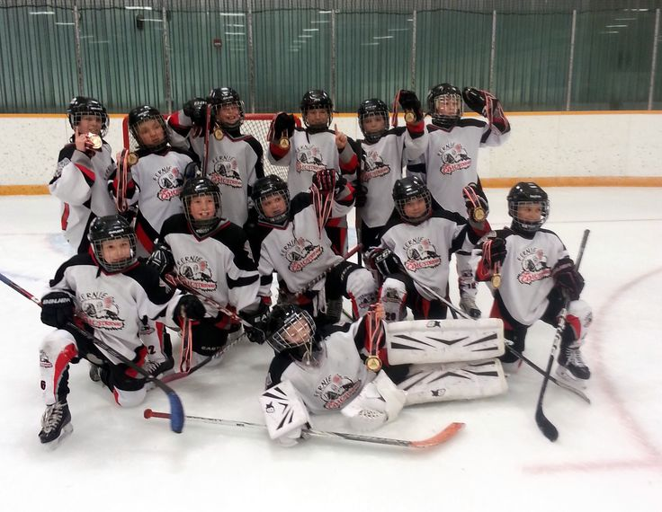 The Fernie Alpine Resort Summit Fund is a proud supporter of the Fernie Junior Ghostriders Atom A Hockey Team.  The FAR Summit Fund supported them with a $300 donation in support of team socks.  The Fernie Junior Ghostriders Atom A Hockey Team will be finishing off their successful season at the Atom Fiesta Hockey Tournament in March - good luck to the team!