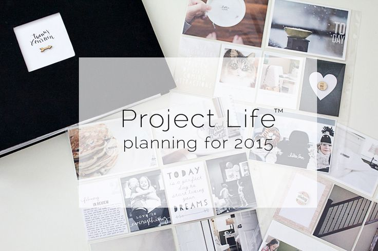 documenting plans for 2015 — lily and twig
