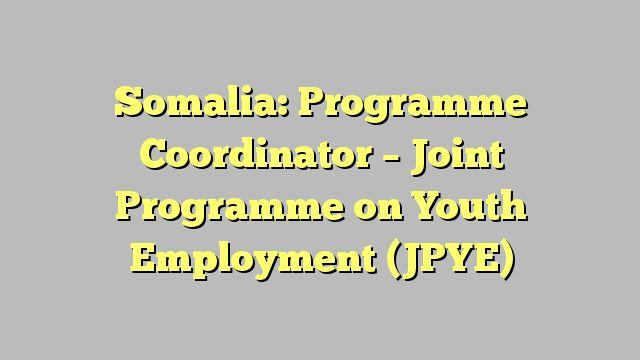 Somalia: Programme Coordinator - Joint Programme on Youth Employment (JPYE)